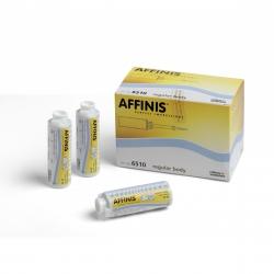 Affinis Mycrosysteme Regular